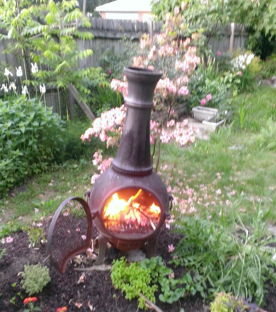 What the Boss Likes – Our garden | Club Schadenfreude