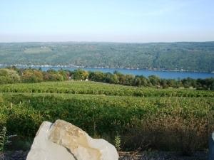 From Bully Hill down toward lake